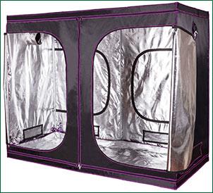 budget grow tent