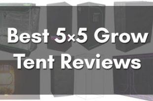 Best 5×5 Grow Tent