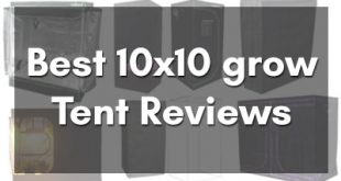 Best 10×10 grow tent Reviews and Buyer's Guide for 2019