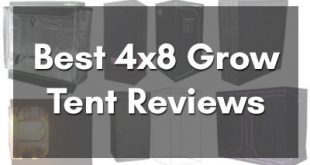 Best 4x8 Grow Tent Reviews