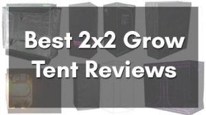 Best 2x2 Grow Tent