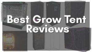 Best Grow Tent Reviews
