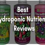 Best Hydroponic Nutrients - Buyer Guide and Reviews