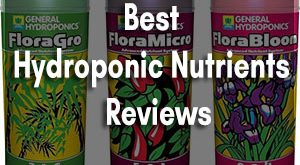 Best Hydroponic Nutrients Buyer Reviews