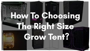 How To Choosing the Right Size Grow Tent