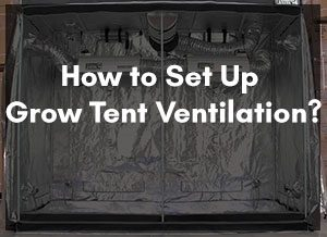 Set Up Grow Tent Ventilation
