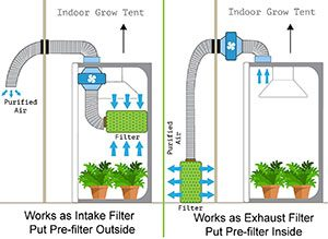 Importance of Growing Tent Ventilation