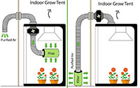 grow tent Ventilation Set Up