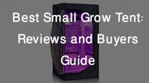 Best Small Grow Tent