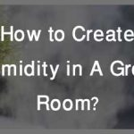 How to Create Humidity in A Grow Room?