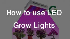 LED Grow Lights Feature