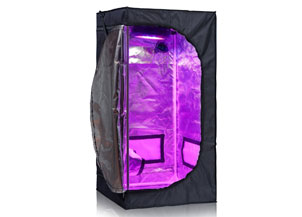 TopoLite 2x2x4 Feet 600D Mylar Hydroponic Indoor Grow Tent