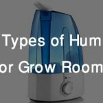 What Types of Humidifier Are Best for Indoor Grow Room?