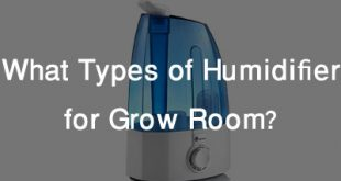What is a Humidifier Feature