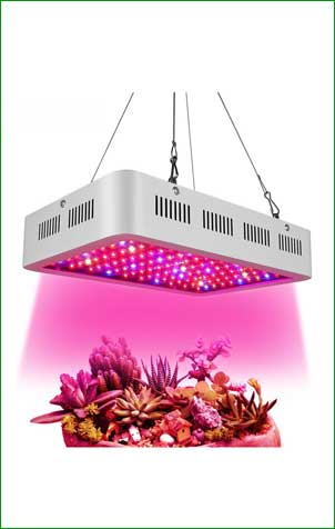Wisful 1000w Led Grow Light
