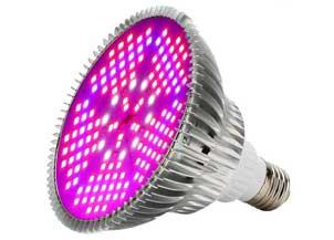 100W Led Grow Light Bulbs Full Spectrum
