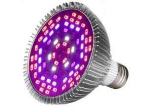 50W Led Grow Light Bulb