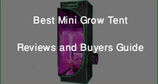 Best Mini Grow Tent