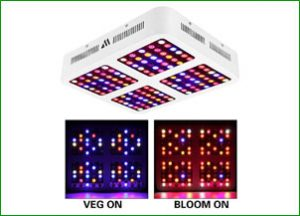 1200W LED Grow Light – Morsen Reflector-Series Full Spectrum Grow Light for Indoor Plants