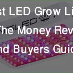 Best LED Grow Light for the Money Reviews and Buyers Guide