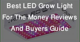 Best LED Grow Light for the Money Feature Image