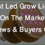 Best Led Grow Lights On The Market Reviews & Buyer's Guide - Top 5 Picks