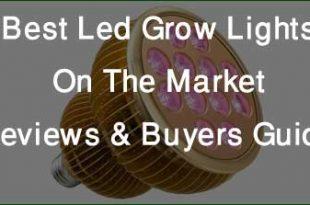 Best Led Grow Lights On The Market
