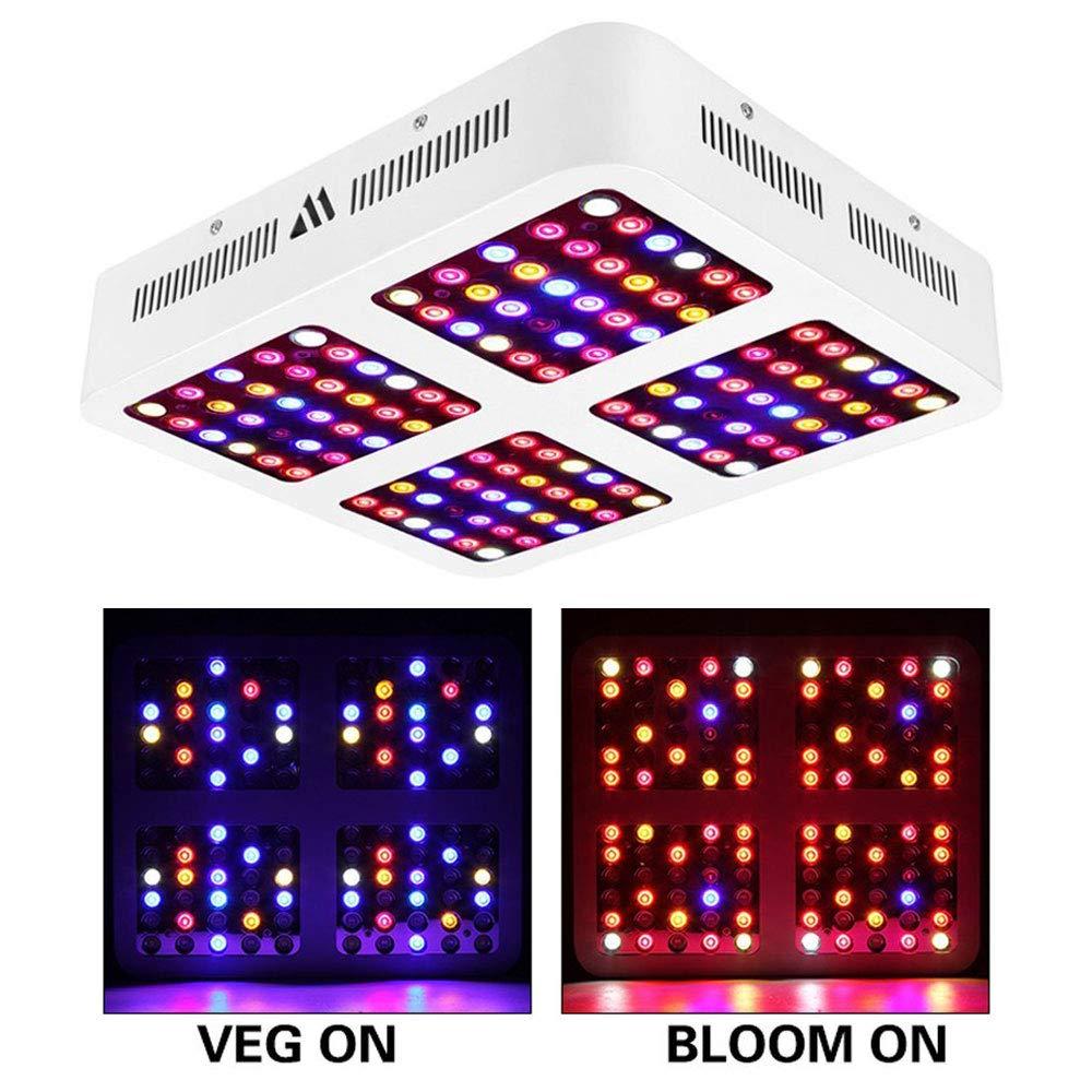 1200W LED Grow Light – Morsen Reflector Series Full Spectrum Grow Light for Indoor Plants Review