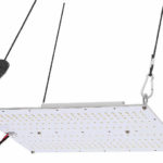 Best Quantum Board LED Grow Lights - How To Choose a Perfect One?
