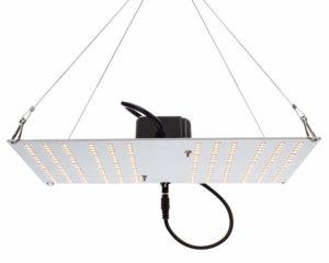 HLG 100 V2 4000K Horticulture Lighting Group Quantum Board LED Grow Light