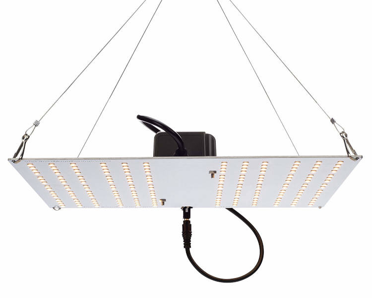 Hlg 100 V2 4000k Horticulture Lighting Group Quantum Board