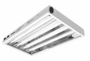 Hydroplanet™ T5 2ft 4lamp Fluorescent HO Bulbs