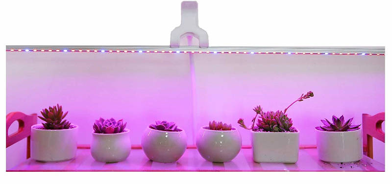 Led Grow Light Ledy 3.2ft 5050 Waterproof Flexible Soft Strip Grow Light for Plant