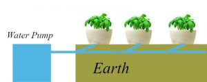 RUN TO WASTE Hydroponic System