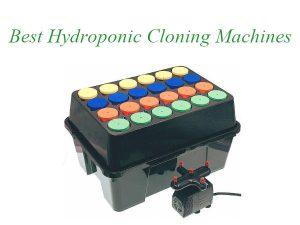 Best Hydroponic Cloning Macnines