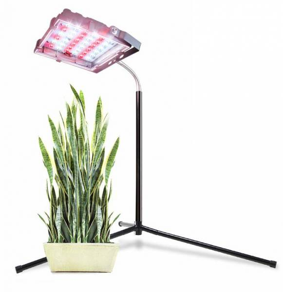 Aceple Floor Grow Light with Stand, Warmwhite Lamp with Flexible Gooseneck, Full Spectrum LED Plant Light
