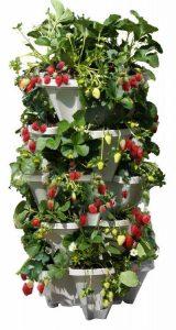 Mr. Stacky 5 Tiered Vertical Gardening Planter, Indoor & Outdoor