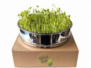 Stainless Steel Seed Sprouting Tray-8 Inch Stackable Sprouter Seedling Germination Kit