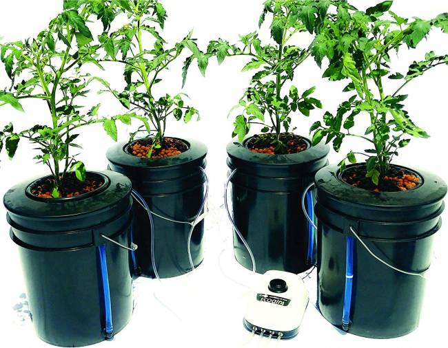 The Atwater HydroPod - Standard AC Powered DWC Deep Water Culture Recirculating Drip Hydroponic Garden System Kit