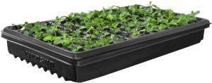 VIVOSUN 10x20 Inches Plant Growing Tray No Drain Holes Heavy Duty for Seed Starter, Plant Propagation Hydroponic Growing