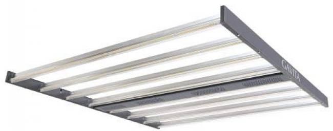 Newest LED Gavita Pro 1650e LED ML
