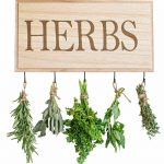 Review Of The 5 Best Herbs Drying Racks & We Answer Readers' Questions