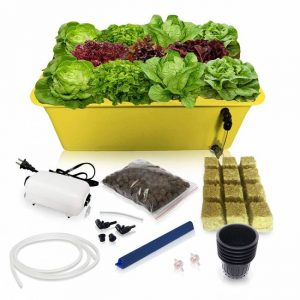 SavvyGrow DWC Hydroponics Growing System-Kit