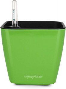 """Aquaphoric Self Watering Planter (5"""") + Fiber Soil = Foolproof Indoor Home Garden"""