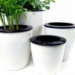 Best 6 Self-Watering Planters (Review) - Why Are They Time-Savers?
