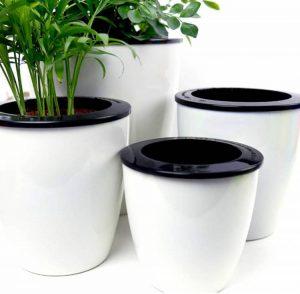 Mkono 3 Pack Self Watering Planter African Violet Pots