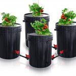Best 5 Hydroponics 5-gallon Buckets (Review) - Why Are They So Innovative?