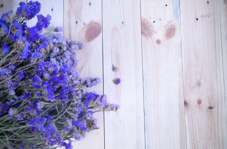 When Should Lavenders Be Deadhead