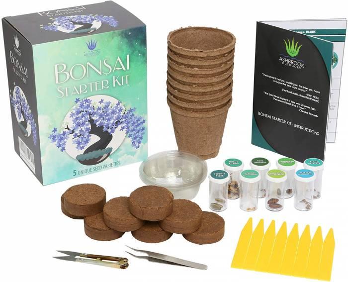 Ashbrook Outdoors Bonsai Starter Kit to Grow 8 Colorful Bonzai Trees Complete Gardening Set