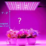 How Far Should LED Grow Lights Be From Plants? - Guide With Examples